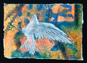 Nora Tryon, Dove, Gratitude Project 2020, mixed media